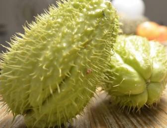 zucchine-spinose